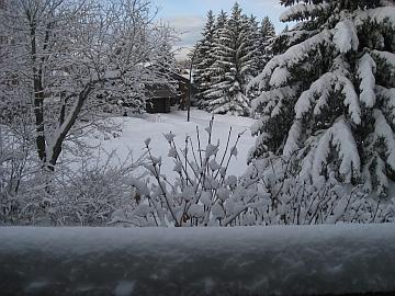 Snow Calgary