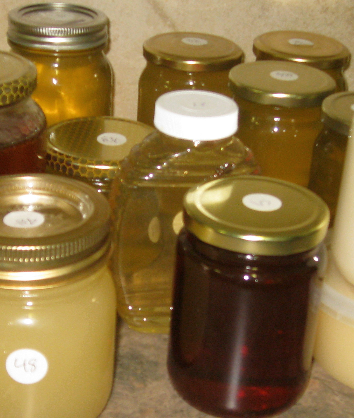 judging honey contest Calgary Bee Club varieties of honey in Alberta