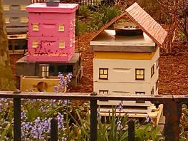 Bees in New Amsterdam