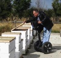 beekeeping Ron Miksha